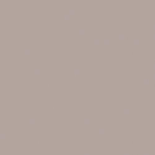 4580 ciemny beż