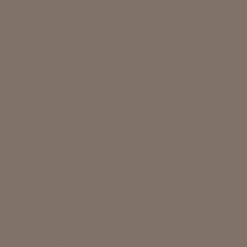4163 ciepły szary